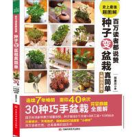 百万读者都说赞 种子变盆栽真简单 【正版书籍】