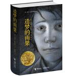 造梦的雨果(精装典藏版,2008年凯迪克金奖作品,2012年奥斯卡3D大片《雨果》原著小说,写给早期电影的立体情书,颠覆传统阅读,奇妙的视觉冲击)