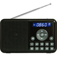 【当当自营】 熊猫/PANDA DS-172 数码音响播放器 插卡音箱 立体声收音机 黑色