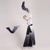 水袖水墨江南舞蹈服装2016新款舞台演出服民族舞古典舞女款冬季