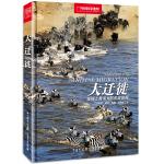 中国国家地理-大迁徙:地球上最伟大的生命旅程