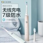 小熊(Bear)电动牙刷 3D声波震动成人无线可充电式牙刷 清除牙渍软毛美白防水 DYS-A03B1
