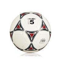 双星足球5号足球运动训练比赛室外室内成人足球 五号足球DSA844