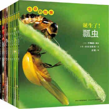 螳螂 昆虫摄影绘本集,大画面写真图片 3-6岁儿童科普书