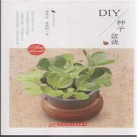 DIY种子盆栽( 货号:756800815)