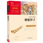 骆驼祥子(中小学新课标必读名著)人教教材七年级下册推荐阅读 骆驼祥子 海底两万里