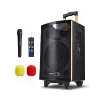 纽曼(Newmine)SM-1600D 拉杆音箱广场舞户外音响 便携式低音炮音箱移动扬声播放器扩音带无线麦克风