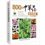 800种中草药彩色图鉴(白金珍藏版)
