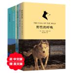 自然主义文学珍藏版套装:野性的呼唤+老人与海+瓦尔登湖(套装共六册)(买中文版送英文版)
