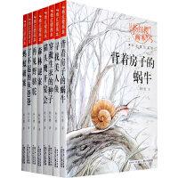 杨红樱画本科学童话系列整套(8本)