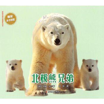 北极熊兄弟/动物亲情故事摄影绘本