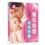 催乳按摩彩色图解(赠光盘)(母乳喂养,把健康和爱送给孩子,这是一个终身的礼物)