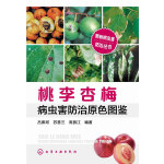 果树病虫害防治丛书--桃李杏梅病虫害防治原色图鉴
