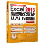 Excel 2013高效办公实战从入门到精通 (视频教学版)