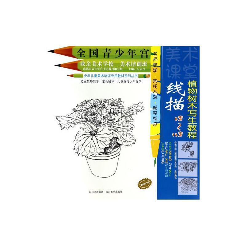 线描植物树木写生教程(修订版6岁-18岁)/少年儿童美术培训专用教材