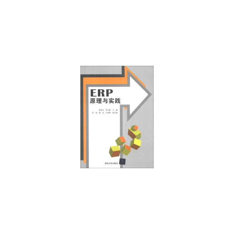 ERP原理与实...