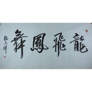 赵忠祥央视著名主持人、黄胄弟子 书法 龙飞凤舞