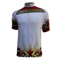 2015舒适透气骑行服夏季短袖 速干上衣赛车服 山地公路排汗自行车骑行服
