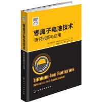 锂离子电池技术――研究进展与应用