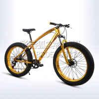 20 26寸双碟刹24 27变速减震超宽粗大轮胎哈雷沙滩雪地山地自行车